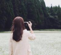 女主叫叶如宁的小说《情如月光,爱似微尘》在线阅读