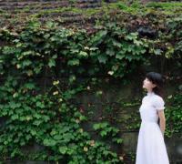 《别梦依稀温小园》苏子诺战勋爵在线阅读