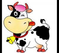 生肖龙与生肖牛相配吗