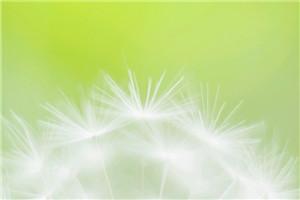 冬天的早安心语正能量_早安正能量简单一句话