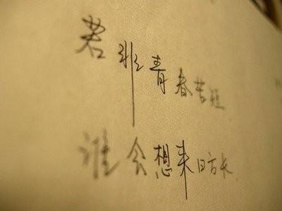 文艺励志句子:文艺一点的青春励志句子