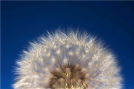 经典日志大全:充满阳光的心态面对人生