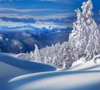 下雪了怎么发朋友圈,下雪的图片