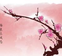 毛泽东描写梅花的诗句