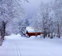 描写雪的诗句,关于雪的诗句古诗词
