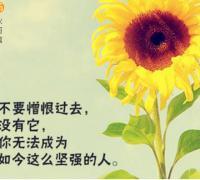 扬帆起航的8字励志诗句