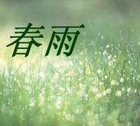 描写春雨春分的春天景色的诗句