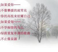 简短很美的现代爱情诗,读完整个人都醉了