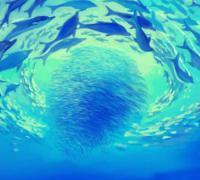 海底两万里读后感800字初中