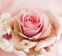 33朵玫瑰花的花语是什么?介绍33朵玫瑰花代表及含义
