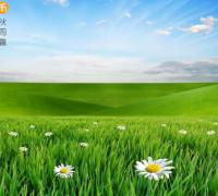 关于绿色环保的口号,环保的标语