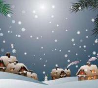 寒假看雪的随笔250字