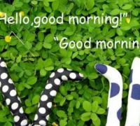 早晨问候语励志语句