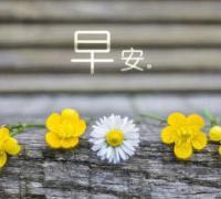 2018最新微信早安心语