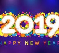 猪你幸福,2019猪年祝你新年快乐