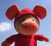 2019猪年新年贺词成语接龙