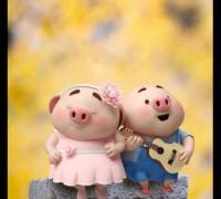 猪年新春贺词猪开头_拜年贺词